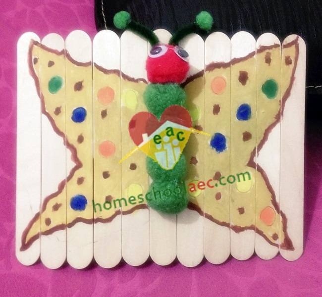 life cyce butterfly craft
