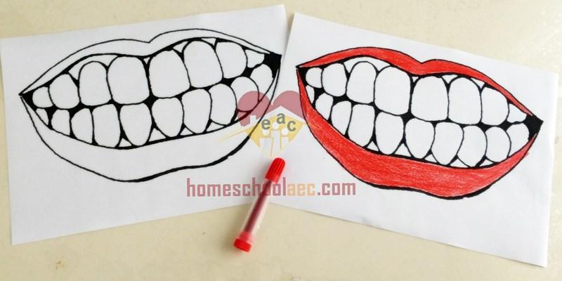 Tooth brush activity and fine motor skills