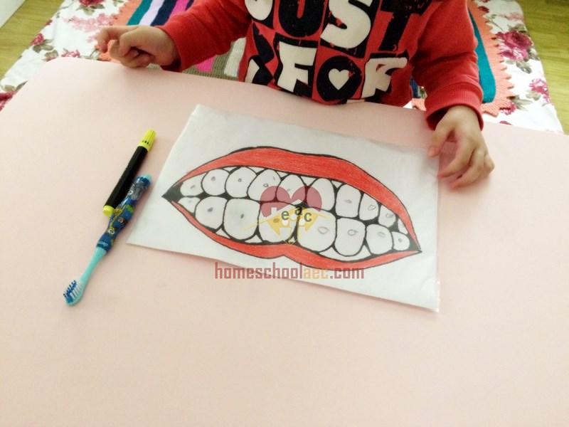 baby teeth activity