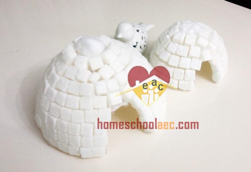igloo craft