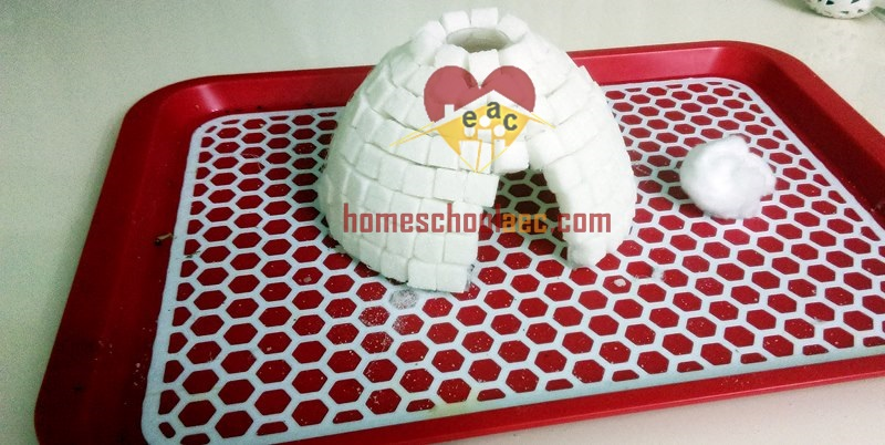 igloo craft for toddlers