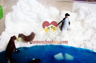 Winter Sensory Table Ideas Archives Homeschool Craft And Art