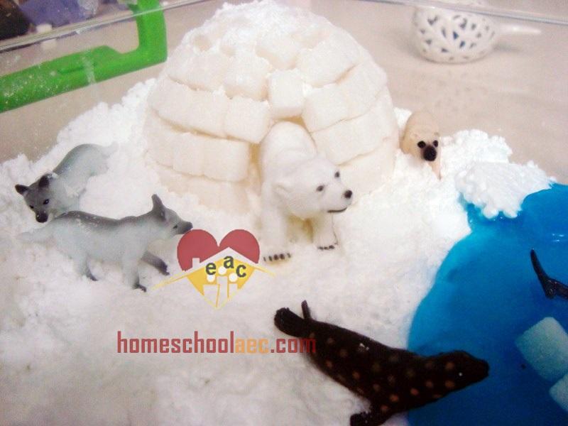 Polar Sensory Bin For Toddlers Winter Sensory Bags Activities