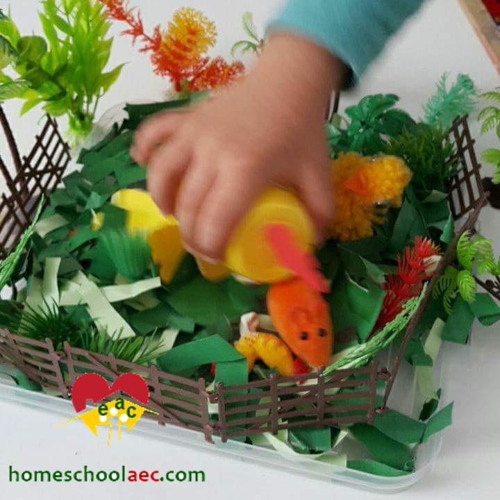 farm animals preschool