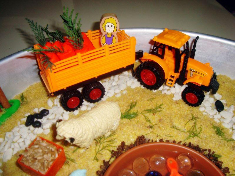 farm sensorial activity